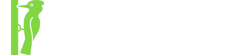 Discover Marche